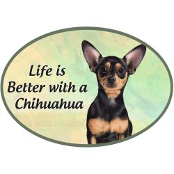 Chihuahua, black  Euro Magnet