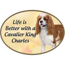 King Charles Cavalier  Euro Magnet