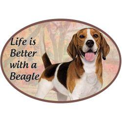 Beagle  Euro Magnet