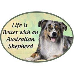 Australian Shepherd  Euro Magnet
