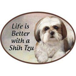 Shih Tzu, tan and white puppy cut  Euro Magnet