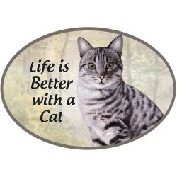 Tabby, silver cat Euro Magnet