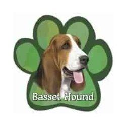 Basset Hound Car Magnet