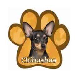 Chihuahua Car Magnet
