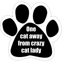 One cat away from crazy cat lady Car Magnet