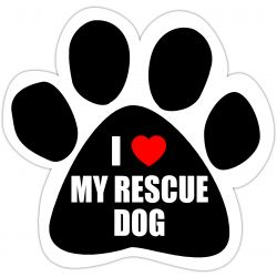 I love my rescue dog Car Magnet