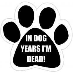 In dog years I'm dead Car Magnet