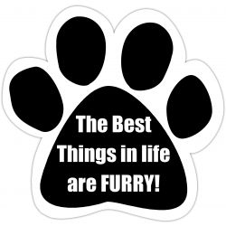 The best things in life are furry Car Magnet