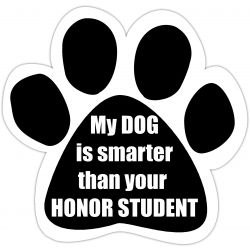 My dog is smarter than you honor student Car Magnet