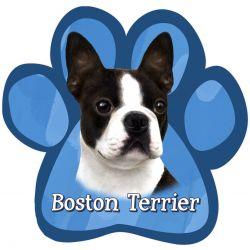 Boston Terrier Car Magnet