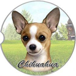 Chihuahua, Tan car coaster