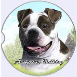 American Bulldog car coaster