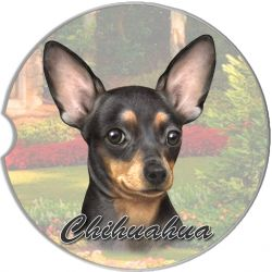 Chihuahua, Black car coaster