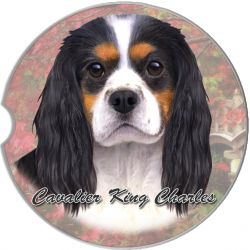 Cavalier, Tri-color car coaster