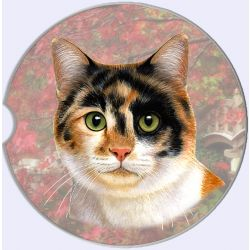 Calico car coaster