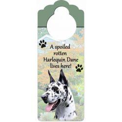 Harlequin Dane