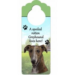 Greyhound, Brindle