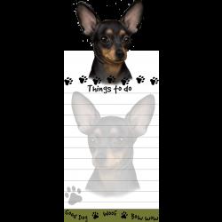 Chihuahua, black