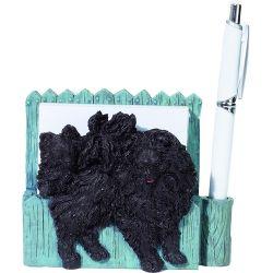 Pomeranian, black
