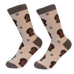 Dachshund, black Socks