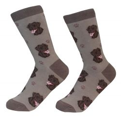 Labrador, chocolate Socks