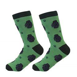 Poodle, Black Socks