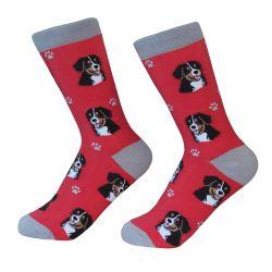 Bernese Mt. Dog  Socks
