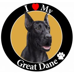 Great Dane, black