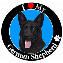 German Shepherd, black