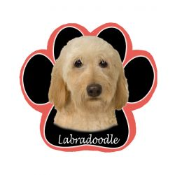 Labradoodle, yellowMousepad