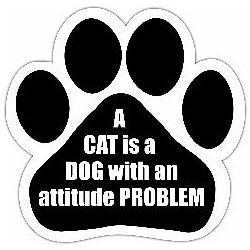 A cat is a dog with an attitude problem Car Magnet