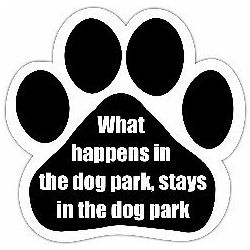 What happens in the dog park, stays in the dog park Car Magnet