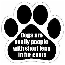 Dogs are really people with short legs in fur coats Car Magnet