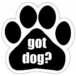 Got Dog? Car Magnet