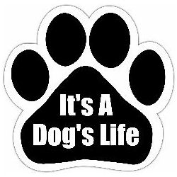 It's a dog's life Car Magnet