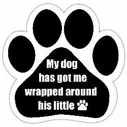 My dog has got me wrapped around his little (paw) Car Magnet