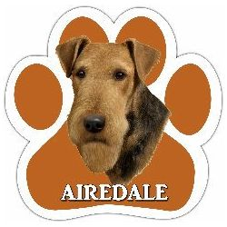 Airedale Car Magnet