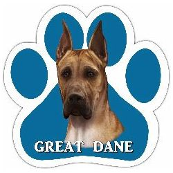 Great Dane, fawn Car Magnet