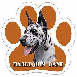 Harlequin Dane Car Magnet