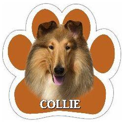 Collie Car Magnet