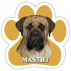 Mastiff Car Magnet