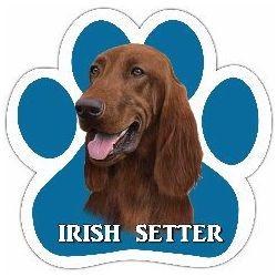 Irish Setter Car Magnet