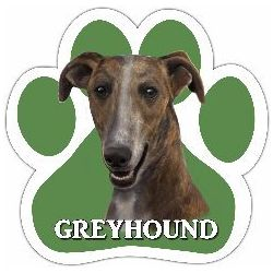Greyhound, brindle Car Magnet